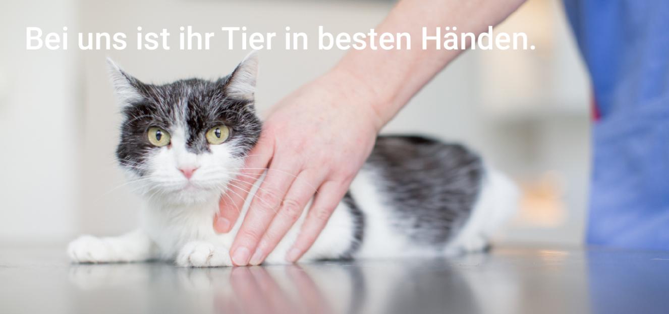Tierärztepraxis Freund Ludwigshafen